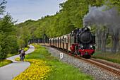 Narrow gauge railway Molli and cycle path between Heiligendamm and Bad Doberan, Mecklenburg Western Pommerania, Germany