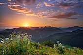 View from mount Setzberg to sunrise above mountain scenery, Bavarian Alps, Upper Bavaria, Bavaria, Germany