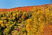 Fall foliage color in the Lutsen Mountains near the Lutsen Mountain Resort, Minnesota, USA