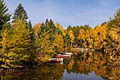 Reflections of fall foliage color in a small lake in northern Wisconsin, USA