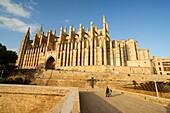 Mallorca Cathedral, XIII Century, Historic-Artistic, Palma, Mallorca, Balearic Islands, Spain, Europe