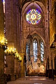 Chapel of Eucharistic Adoration, 2007, by Miquel Barceló, Mallorca Cathedral, XIII Century, Historic-Artistic, Palma, Mallorca, Balearic Islands, Spain, Europe