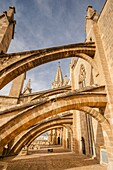 buttresses, Mallorca Cathedral, XIII Century, Historic-Artistic, Palma, Mallorca, Balearic Islands, Spain, Europe