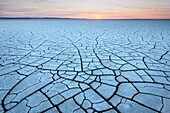 abstract, alkali, arid, barren, color image, crack, cracked, desert, dried, dry, evening, flat, form, harsh, horizontal, hot, lakebed, Malheur National Wildlife Refuge, Oregon, Pacific northwest, parched, pattern, playa, remote, shape, sunset, M28-1882159