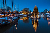 Floating christmas tree and vintage boats in the old harbour of Carolinensiel at twilight, Lower Saxony, Germany, Europe