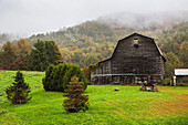 Old barn in the fog, Vermont, USA
