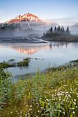 Exit Glacier, Kenai Fjords National Park, Kenai Peninsula, Alaska, U S A