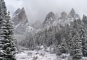 Rosengarten also called Catinaccio mountain range in the Dolomites of South Tyrol Alto Adige during autumn  The Tschamin Valley also called Ciares after an early snowstorm  The Rosengarten is part of the UNESCO world heritage site Dolomites  Europe, Centr