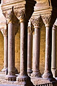 Romanesque cloister of the monastery of Santa Maria - L´Estany - Bages - Barcelona - Catalonia - Spain - Europe