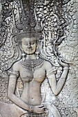 Cambodia, Angkor Temples Complex - close detail relief of the Angkor ancient city, Angkor Wat Temple, Asia (UNESCO)