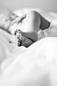 Newborn Baby's Feet on Bed