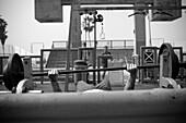 Man Lifting Weights, Venice Beach, California, USA