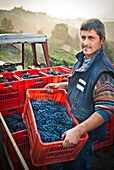 Man Holding Crate of Grapes