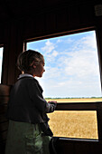 Little Girl At The Window Of The Little Sightseeing Steam Locomotive Of The Bay Of Somme, Somme (80), France