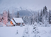 Snowcovered Home In A Wintry Meadow At Dawn With Inside Lights On, Girdwood, Southcentral Alaska