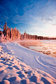 Frosted Spruce Trees And Fog Rising Over The Tanana River Near Richardson Highway In Interior Alaska During Winter