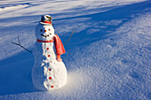Snowman With Red Scarf And Black Top Hat Standing In Front Of Snow Covered Meadow, Winter