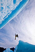 An Ice Climber Swings Down From Rope To Reach Face Of A Large Iceberg Frozen Into Mendenhall Lake, Juneau, Southeast Alaska, Winter