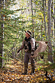 Male Bow Hunter Carries A 54 Moose Antler Rack On His Backpack As He Hikes Out Of Hunt Area, Eklutna Lake Area, Chugach State Park, Southcentral Alaska, Autumn