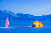 'A Backpacking Tent And Snowshoes Lit Up At Dawn With A Christmas Tree Next To It Foothills Of The Alaska Range In The Distance Isabel Pass Along The Richardson Highway Interior Alaska; Anchorage Alaska United States Of America'