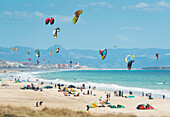 'Kitesurfing along the coast; tarifa cadiz andalusia spain'