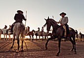 'Cowboys on horses; tarifa cadiz andalusia spain'