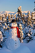 'Snowman wearing a scarf and black top hats standing in front of a snowcovered spruce forest;Anchorage alaska usa'