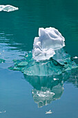 Icebergs Floating in Tracy Arm Alaska SE Summer Fords-Terror Wilderness Area