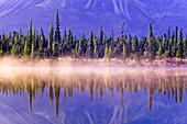 Forest reflects in Drashner Lake w/mist along shoreline AK Range in background Southcentral Alaska Autumn