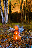 One Jack-O-Lantern person dressed as an angel, standing in a forest & fallen leaves on the ground at twilight during Fall in Anchorage, Alaska.