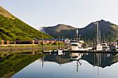 Sunrise on the commercial fishing boats in the King Cove harbor, King Cove, Alaska Peninsula, Southwest Alaska, summer.