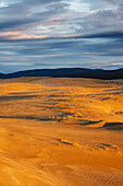 The Great Kobuk Sand Dunes with the shadows of the Arctic midnight sunset, Kobuk Valley National Park, Northwest Alaska, arctic, summer