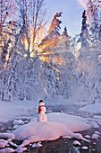 Snowman standing on a small island in the middle of a stream with sunrays shining through fog and hoar frosted trees in the background, Russian Jack Springs Park, Anchorage, Southcentral Alaska, Winter. Digitally enhanced.