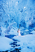 Snowman standing next to a stream with fog and hoar frosted trees in the background, Russian Jack Springs Park, Anchorage, Southcentral Alaska, Winter. Digitally enhanced.
