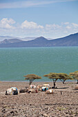 Barren scenery around Loyangalani on Lake Turkana, Kenya