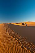 Berber 'Blue man' leading camel across sand dunes at dusk in Erg Chebbi near Merzouga, Sahara Desert, Morocco