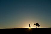 Silhouette of Berber 'Blue man' leading camel across sand dunes at dusk in Erg Chebbi near Merzouga, Sahara Desert, Morocco