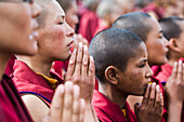 Young monks praying at the Dalai Lama's Teachings.  The Dalai Lama visited Leh, Ladakh - a Buddhist enclave in northern India, for four days in August   © James Sparshatt / Axiom