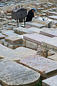 Orthodox Jew praying at tomb at Mount of Olives cemetery, Jerusalem, Israel