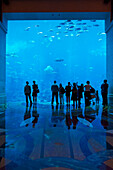 Ian, Cumming, Indoors, Day, Rear View, Large Group Of People, Large Group Of Animals, Silhouette, Reflection, Luxury, Motion, Relaxation, Scale, Wealth, Unrecognizable People, School Of Fish, Aquarium, Window, Vacation, Dubai, United Arab Emirates, Atlant