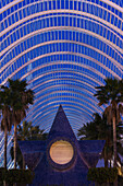 Ian, Cumming, nobody, Indoors, Night, Part Of, Construction, Illuminated, Architecture, Palm Tree, Modern, Art And Craft, Symmetry, Sculpture, Creativity, Development, Futuristic, Ideas, Simplicity, Tranquility, Spain, Valencia, Umbracle, Ciudad De Las Ar