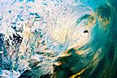 Hawaii, Maui, Makena, Beautiful blue wave breaking at the beach.