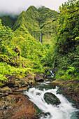 Hawaii, Kauai, Wailua, Beautiful Waterfall and Lush Jungle Stream