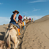 Tourists ride in a row on camels, Jiuquan, Gansu, China