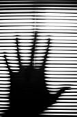 Hand Silhouette Against Blinds, Abstract