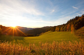 Sunrise above an alpine pasture, Styria, Austria
