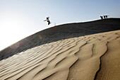 Boy jumping from a sand dune, Agadir, Morocco