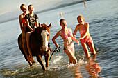 Four girls with a horse in lake Starnberg, Ammerland, Munsing, Upper Bavaria, Germany