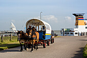 Horse and cart at the harbour, Juist Island, Nationalpark, North Sea, East Frisian Islands, East Frisia, Lower Saxony, Germany, Europe