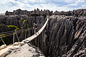 Suspension bridge in Tsingy-de-Bemaraha National Park, Mahajanga, Madagascar, Africa